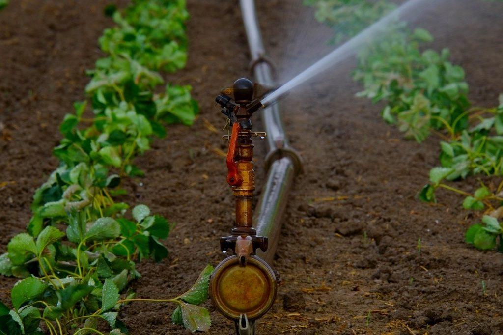 kit irrigazione orto