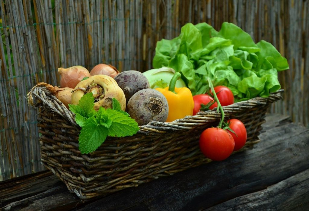 cesto di verdure orto