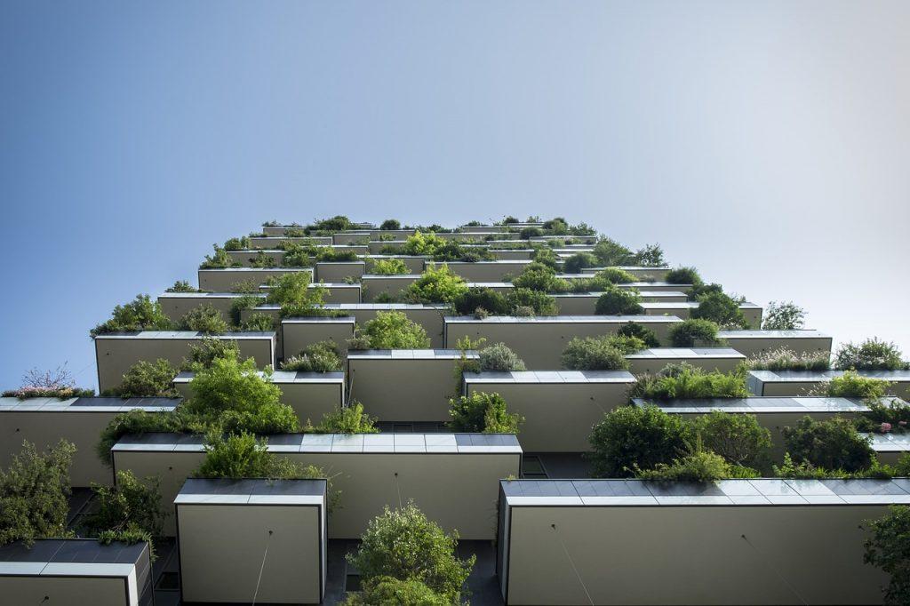 balconi con piante rampicanti