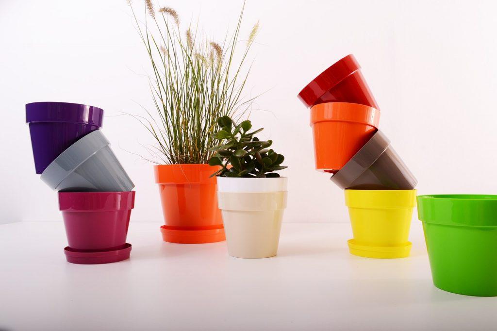dove buttare vasi plastica piante