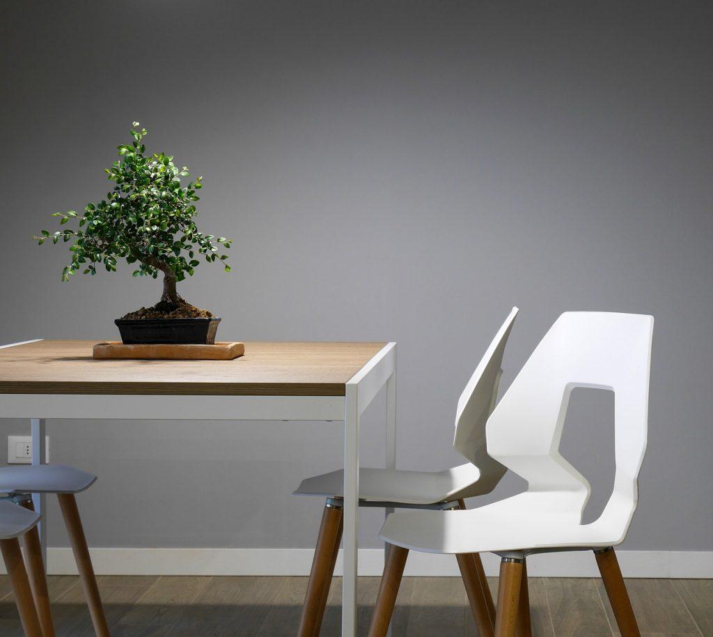 Bonsai verda sul tavolo